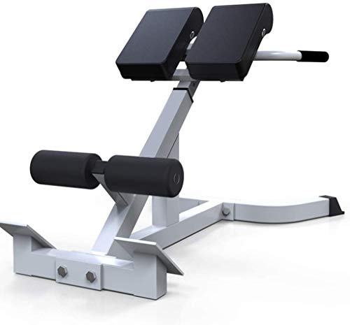 Bench Roman Chair Back Hyperextension/ Hyper Back Extension, Roman Chair, Adjustable Ab Sit up Bench, Decline Bench, Flat Bench Foldable Crunches Abdominal Muscles Fitness Equipment (White)