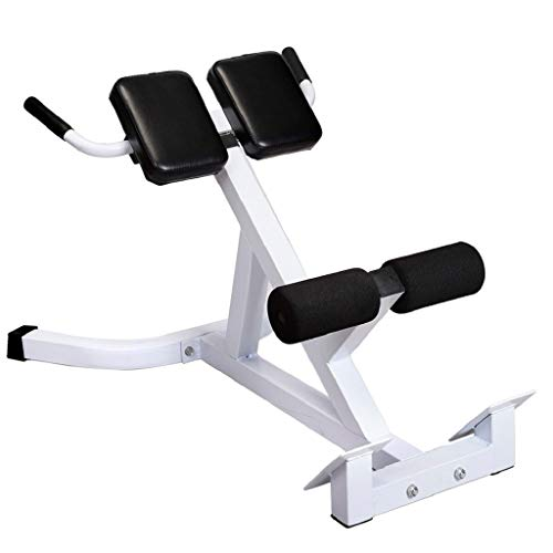 Funic US Fast Shipment Bench Roman Chair Back Hyperextension Adjustable AB Bench Hyperextension Exercise Strength Training Back Machines (White)