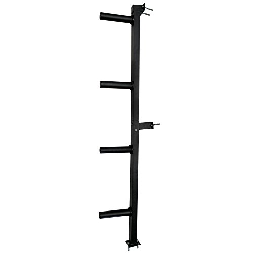 Titan Wall Mounted 4-Peg Olympic Bumper Plate Weight Rack Storage