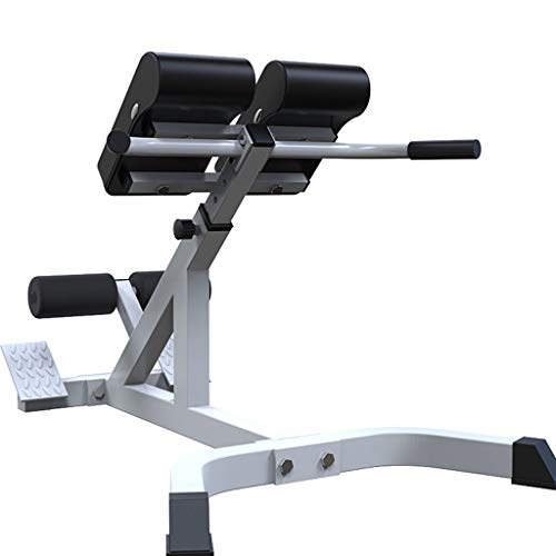 Adjustable Bench Strength Training Back Machines, Multifunctional Height-Adjustable Roman Chair Weightlifting Bed Sports Stretching Stool Strength (43.4x23.5x26.7-37'', Weight Capacity 275 lbs)