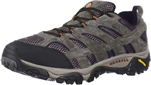 Merrell mens Moab 2 Wp Hiking Shoe, Beluga, 9.5 US