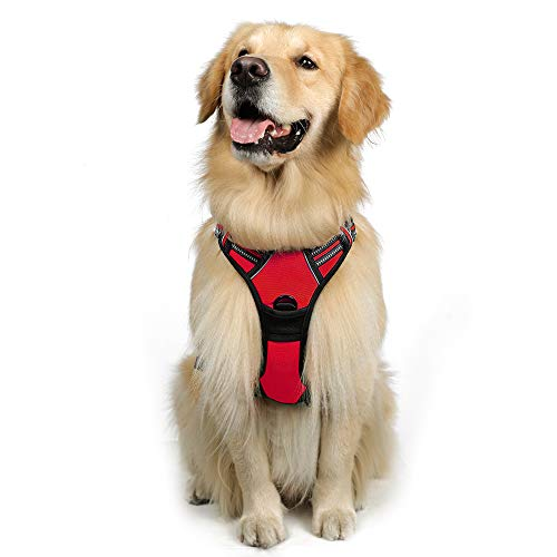 rabbitgoo Dog Harness, No-Pull Pet Harness with 2 Leash Clips, Adjustable Soft Padded Dog Vest, Reflective No-Choke Pet Oxford Vest with Easy Control Handle for Large Dogs, Red (L, Chest 20.5-36')