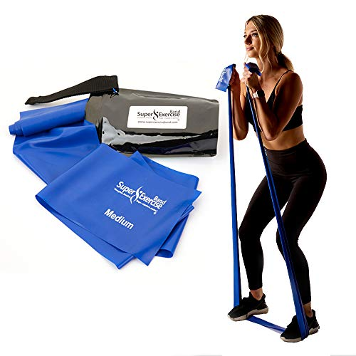 Exercise Bands with Carry Pouch and Door Anchor for Resistance Bands, Latex-Free Stretch Bands, Includes Home Workout App and Ebook, Blue, Medium - Super Exercise Band