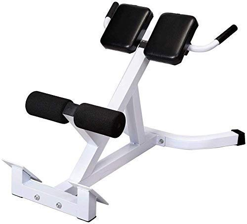 Henf Roman Chair, Hyperextension Bench Adjustable 45 Degree AB Back Abdominal Exercise Sports Machine for Strength Training,White & Black