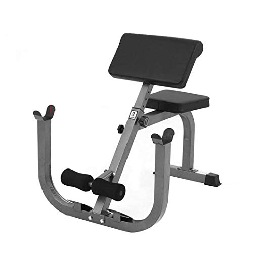 Roman Chair Weight Bench,Max Load 330Lbs Olympic Weight Arm Curl Weight Bench Preacher Curl Isolated Barbell Dumbbell Biceps Station