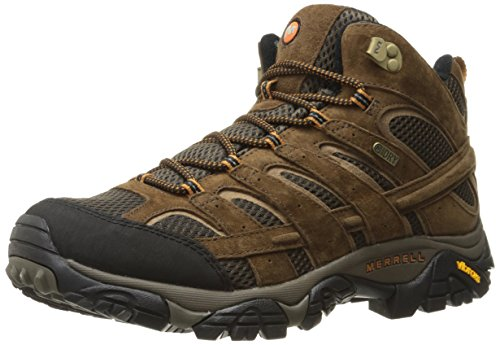 Merrell Men's Moab 2 Mid Waterproof Hiking Boot, Earth, 11 M US