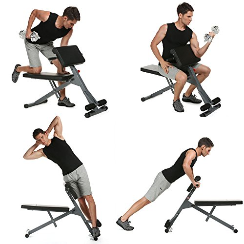 Adjustable Ab Bench Multi Roman Chair Incline/Decline Sit Up Bench Abdominal Bench for Home Gym Office (US Stock) (Ab Chair)