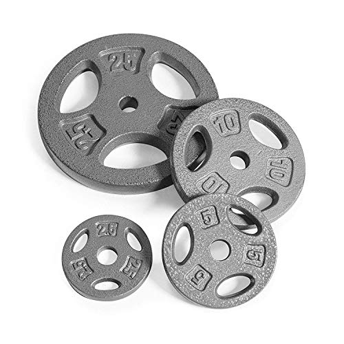 CAP Barbell Standard 1-Inch Grip Weight Plates, Single, Gray (25 Pound (Set of 2))