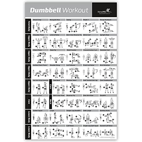 NewMe Fitness Workout Posters for Home Gym - Dumbbell Exercise Posters for Full Body Workout - Core, Abs, Legs, Glutes & Upper Body Training Program (Vol 1)