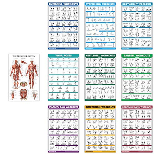 10 Pack - Exercise Workout Poster Set - Dumbbell, Suspension, Kettlebell, Resistance Bands, Stretching, Bodyweight, Barbell, Yoga Poses, Exercise Ball, Muscular System (PAPER, NON LAMINATED,18' x 27')