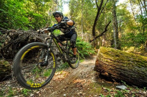 Mountain Bike Buying Guide 2019