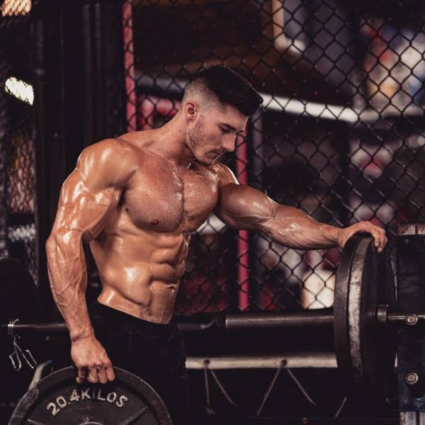 Best Whey Protein Isolate Reviews 2019