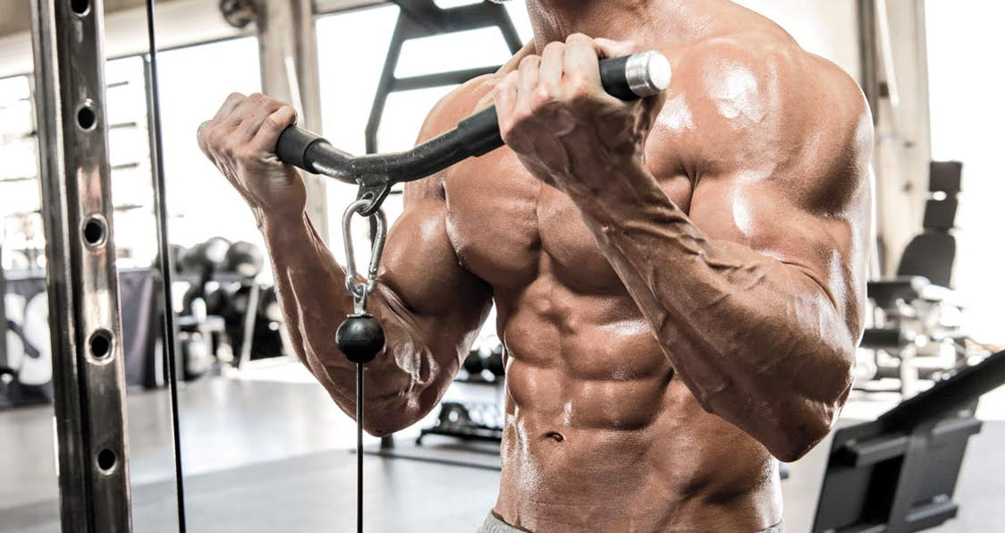 Best Biceps Curl Machine 2019