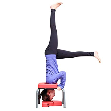 10 best headstand stools 2020  buyer's guide  the gym guides